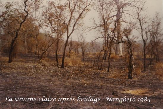 1984  Nangbeto Page 3 h