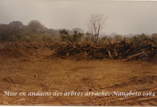 1984  Nangbeto Page 4 h
