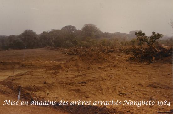 1984  Nangbeto Page 4 i