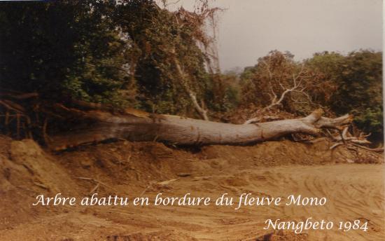 1984  Nangbeto Page 5 h