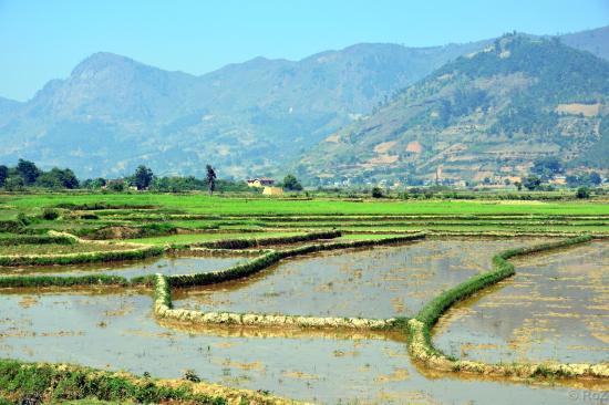 1 madagascar paysage robert zeller 2015