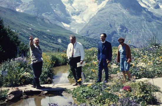 1965 toujan montagnes 2