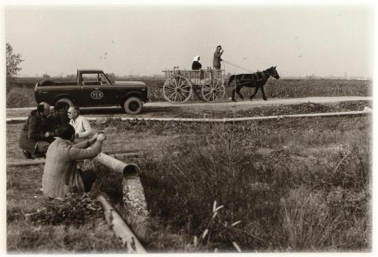 1978 larissa cheval chariot 5
