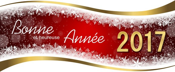 2017 bonne annee