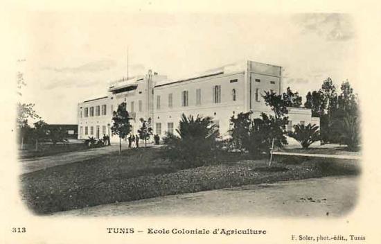 Ecole coloniale d agriculture de tunis 1