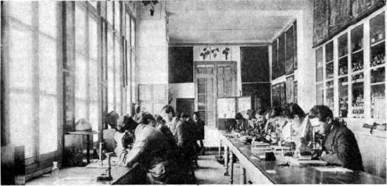 Ecole coloniale d agriculture de tunis 3